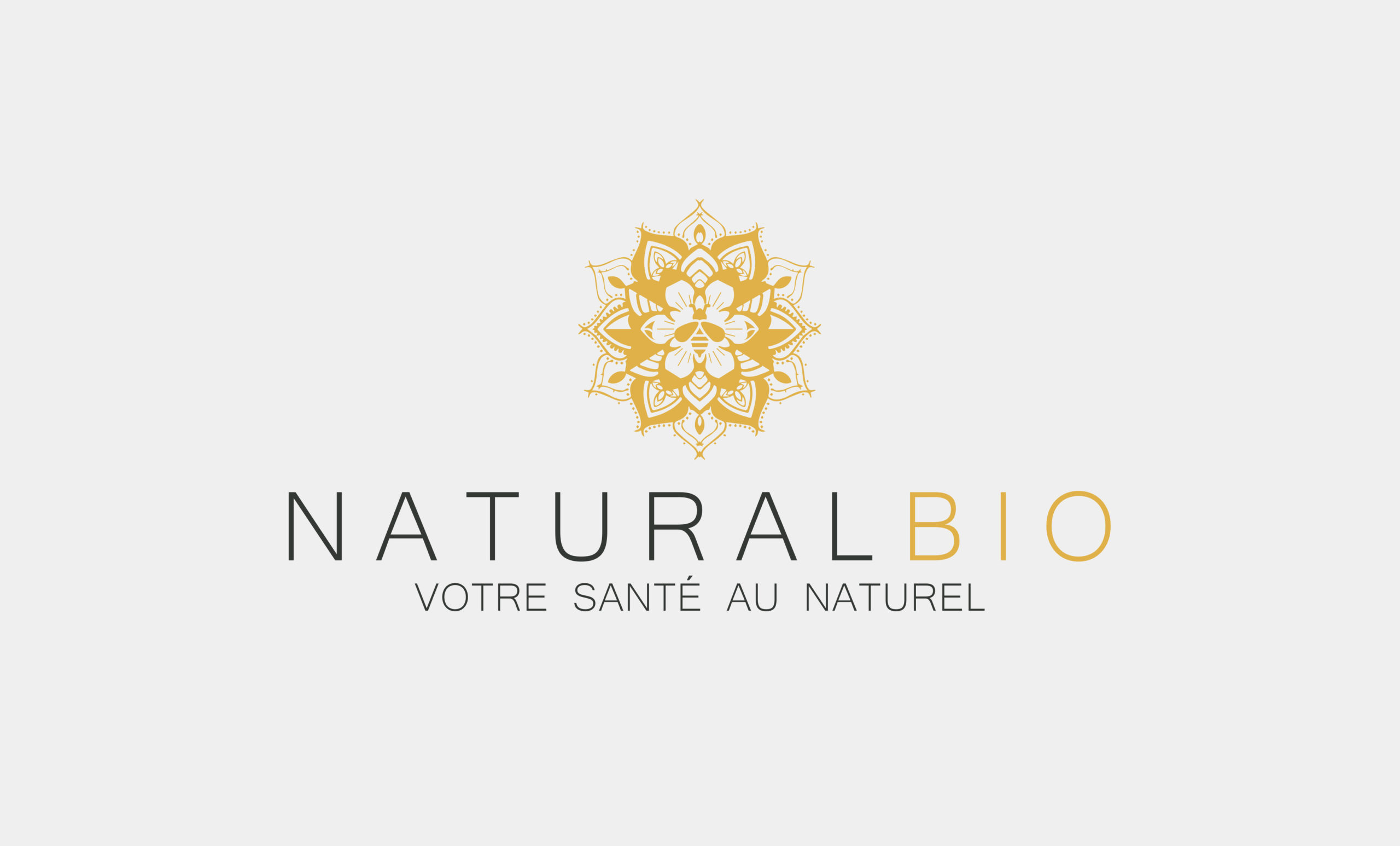 logo-professionnel-natural-bio
