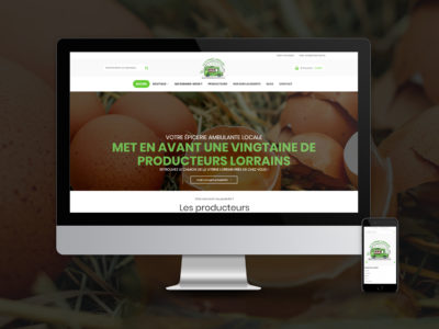 site-internet-vitrine-lorraine