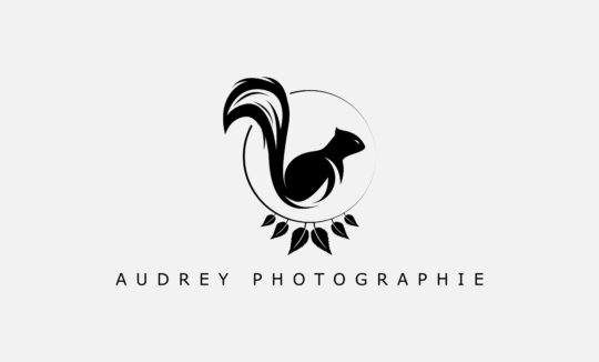 logo-photographie-animal